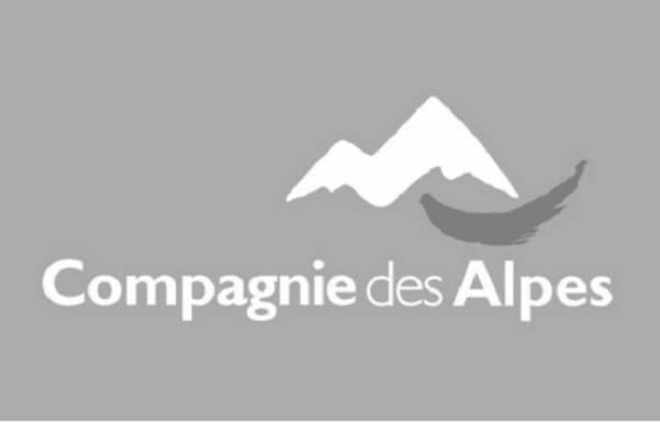 alpes s a a joint venture proposal