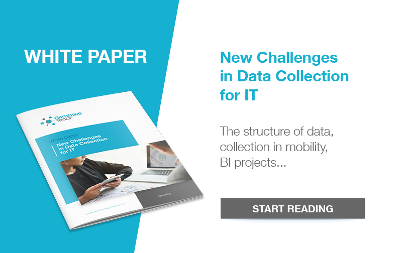 White paper excel IT data collection