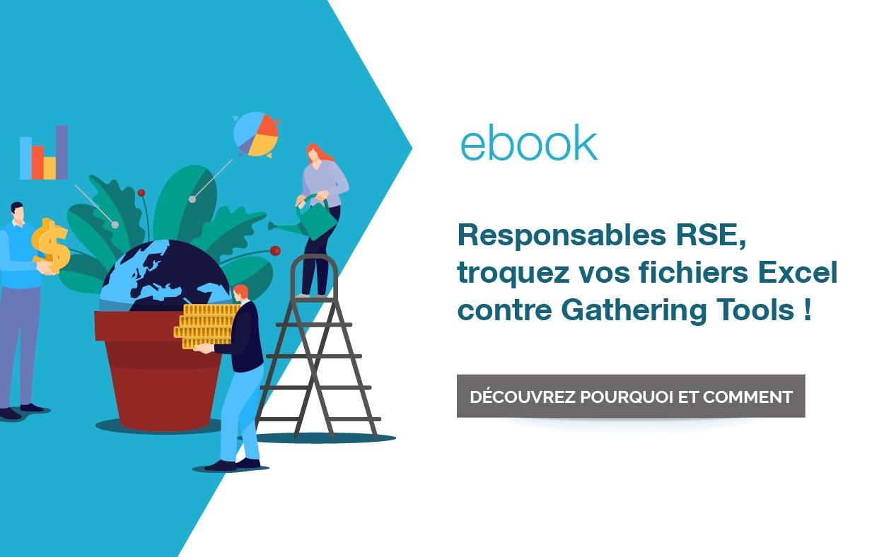 Ebook RSE